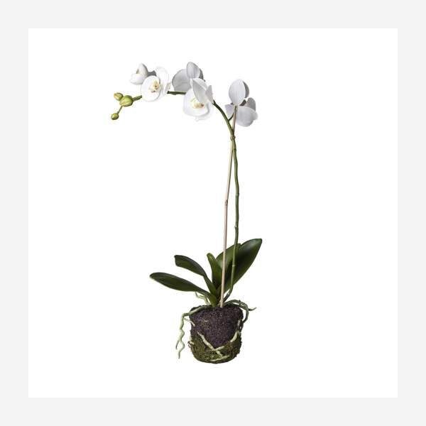 Artificial white Phalaenopsis Orchid plant 59cm S
