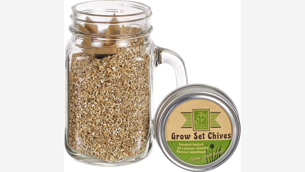 Chive Seeds in Glass Mug