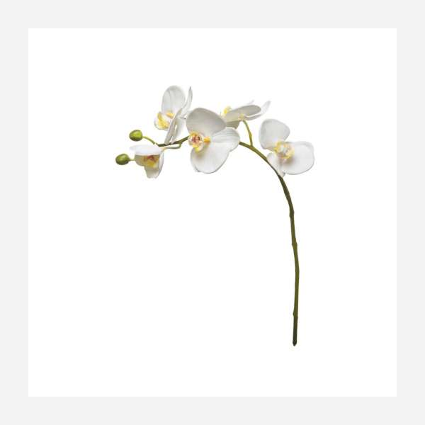 Artificial Phalaenopsis orchid 47.5cm white