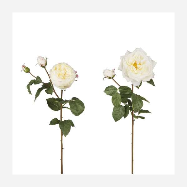 Artificial roses 77cm white sold individually