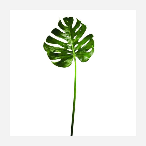 Feuille de Monstera artificielle 114cm
