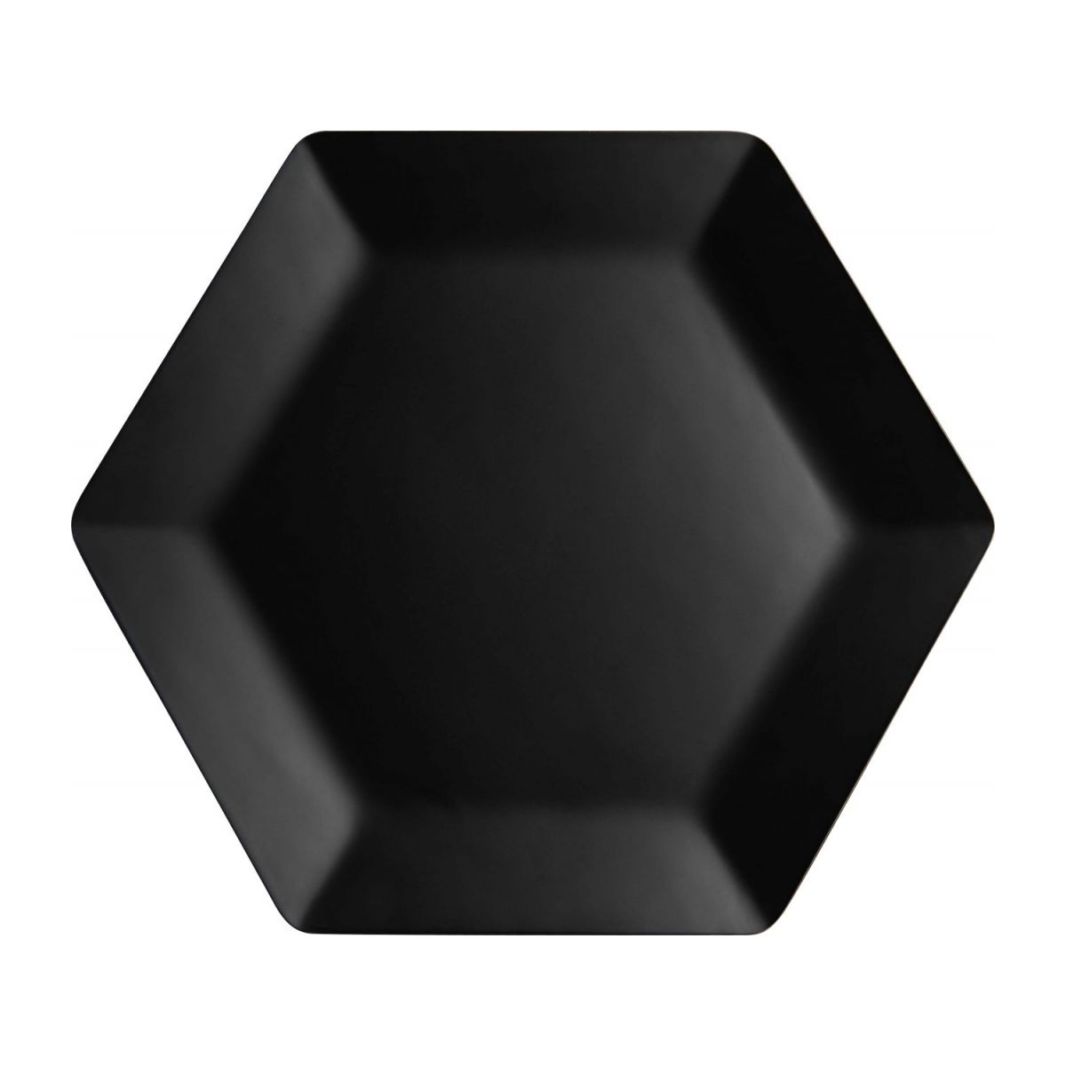 Large hexagonal tray n°3