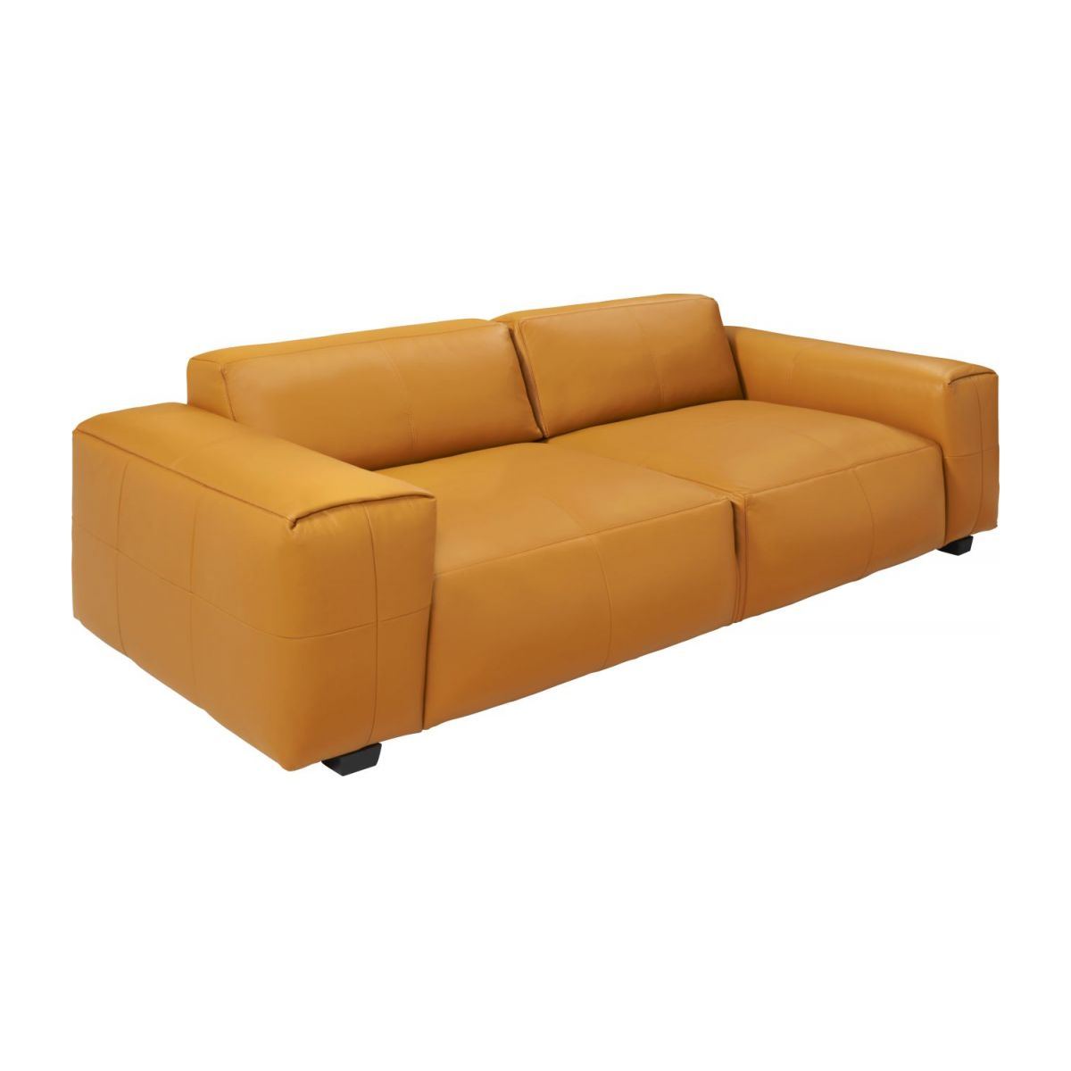 2 seater sofa in Savoy semi-aniline leather, cognac n°1