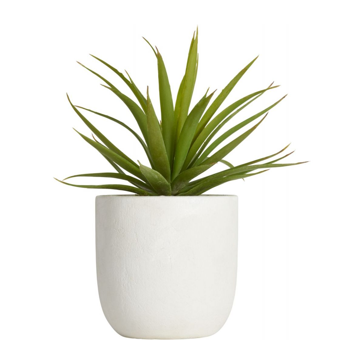 Artificial agave n°2