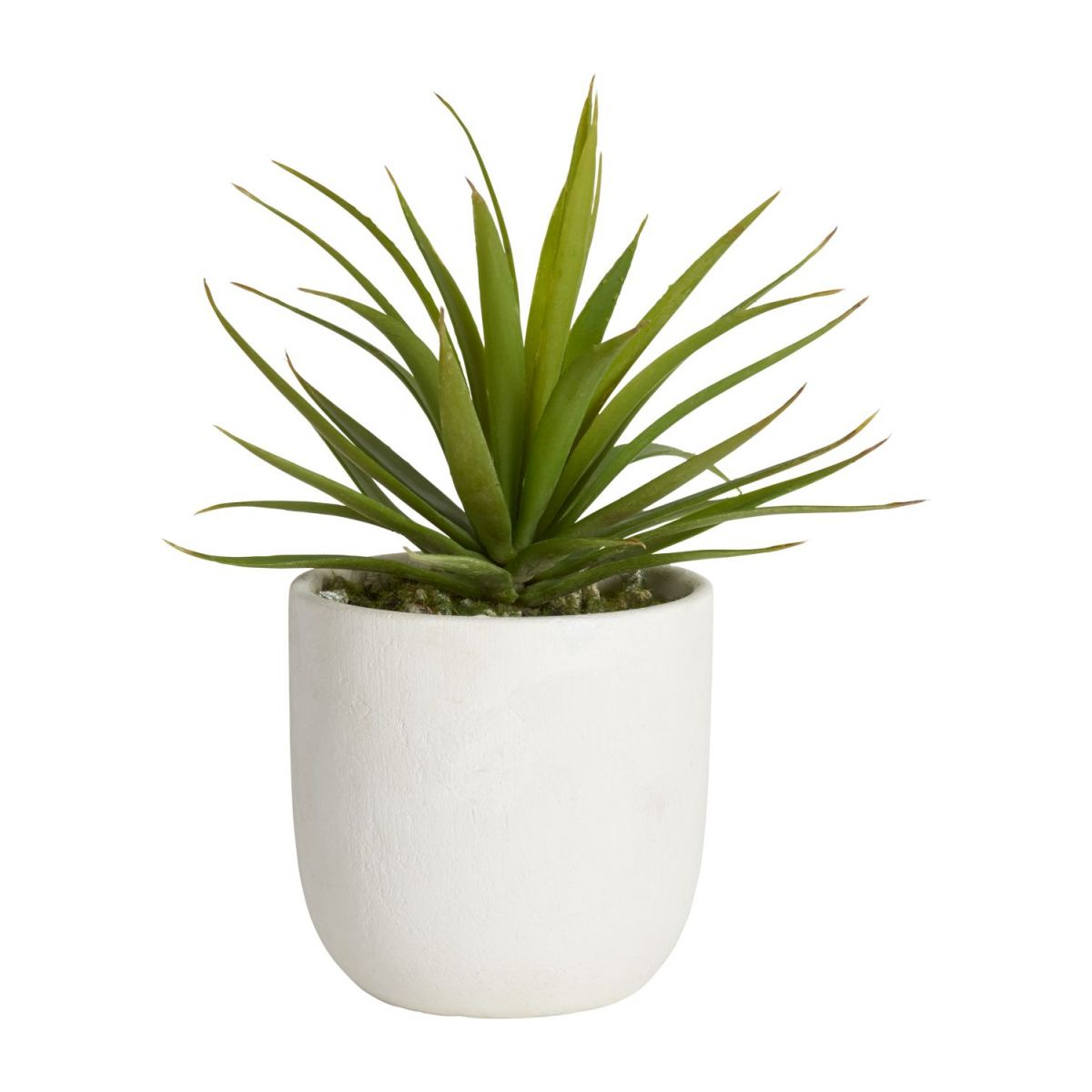 Artificial agave n°1