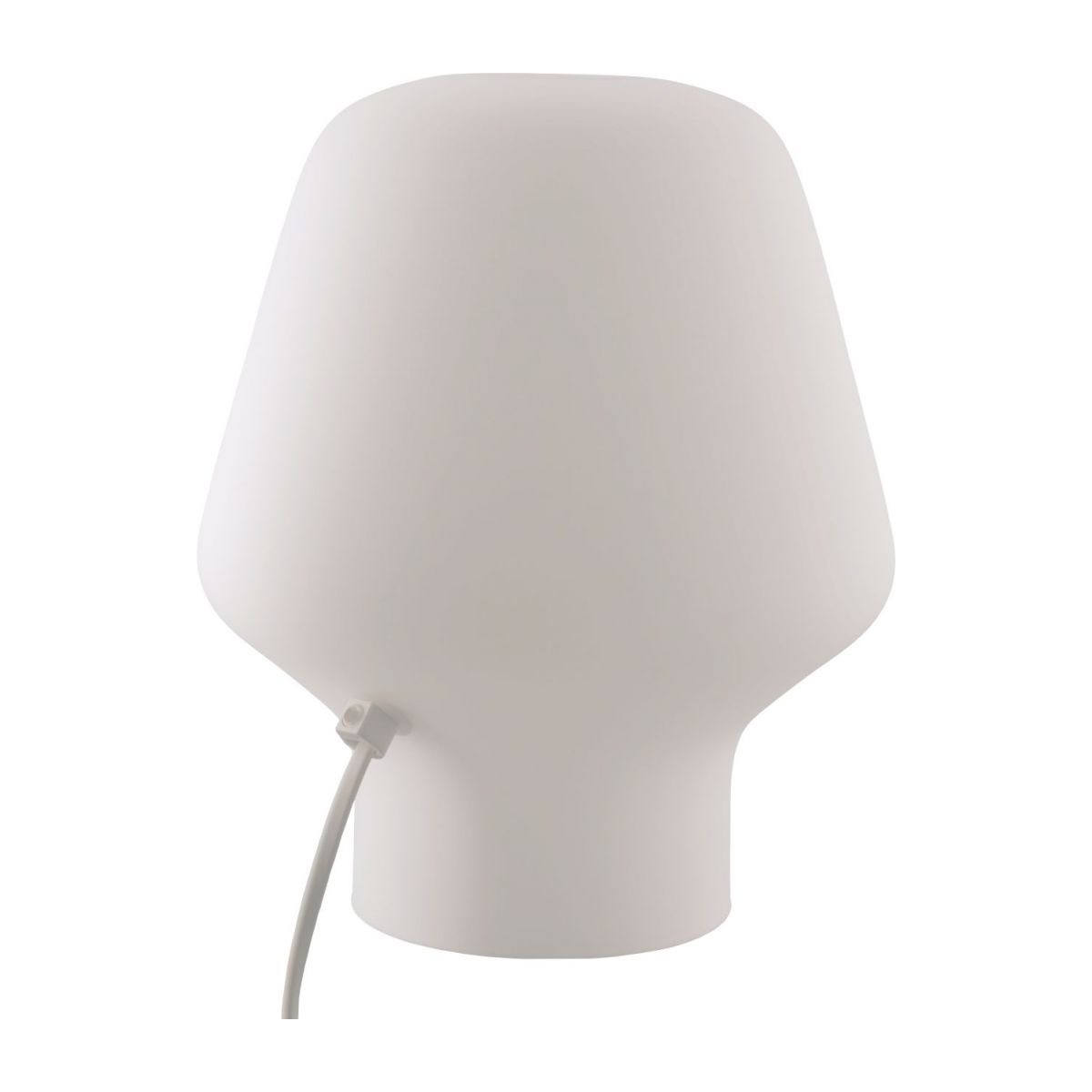 Small frosted glass table lamp n°3