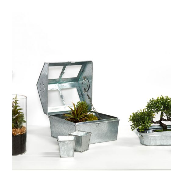 Terrarium made of zinc  n°10