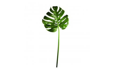 Hoja de monstera artificial 114cm