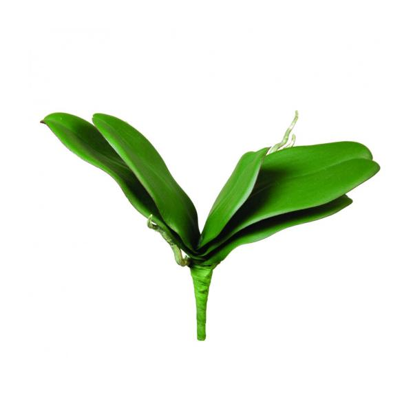 Artificial Phalaenopsis Orchid Leaves 30cm