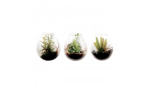 Set of 3 artificial wall hanging succulent plants 6.5cm
