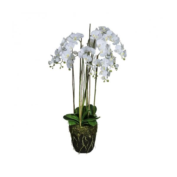 sia kunstpflanze orchidee phalaenopsis in erdballen 130 cm wei gr e xxl habitat. Black Bedroom Furniture Sets. Home Design Ideas