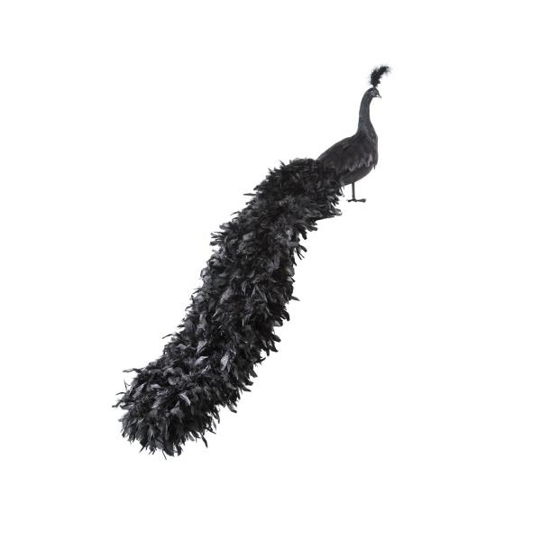 Pavo real decorativo L152 negro